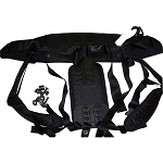 Proteam Backpack Backplate Harness OEM # 103166